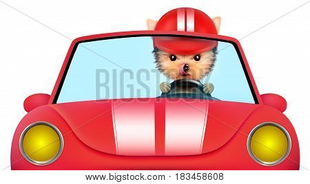 Funny puppy sitting in the red cabriolet with helmet isolated on white background. Car rental and buying concept concept. 3D illustration with clipping path