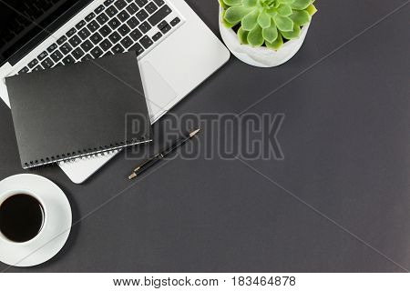 Laptop, diary, cup of tea, plant, and pen on grey background