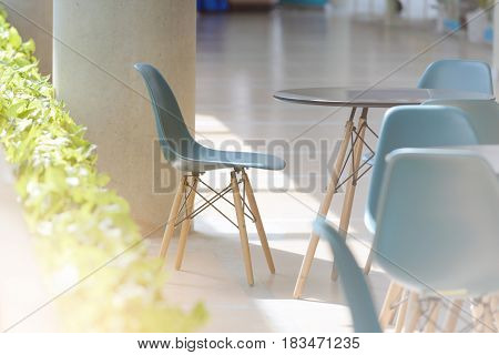 modern chairs and table with natural ight