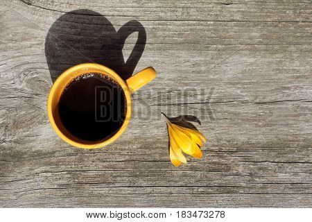 Yellow mug with a flower of crocus on an old bench / coffee pause in sunny tones