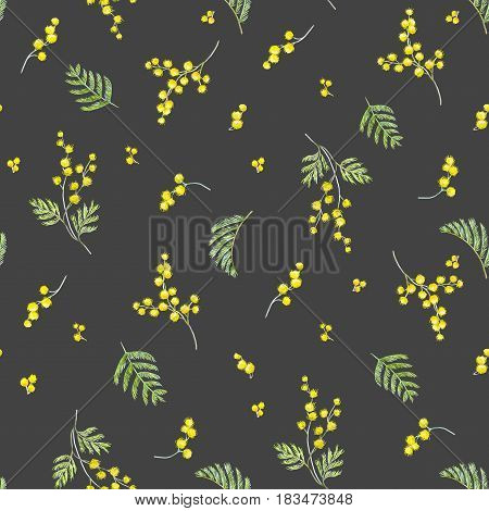 Beautiful seamless pattern with hand drawn watercolor mimosa flowers