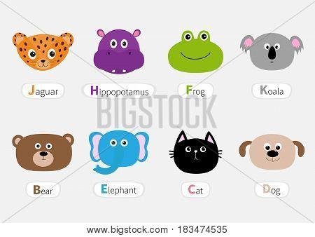 Cat jaguar dog hippopotamus elephant bear frog koala. Zoo animal head face Name plate Cute cartoon character set. Baby children education. Flat design White background. Isolated Vector