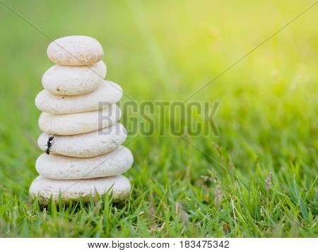 Black ant climbing Balance Stones stacked to pyramid in the soft green background to Spa ideas design or freedom and stability concept on rocks.