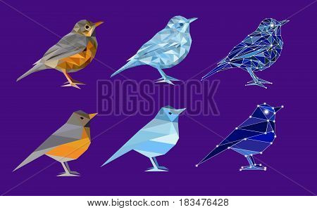 Set of birds in polygon style. Complicated and simple: bird from nature (thrush), ice bird and bird made of constellation. Isolated illustration can be used in printing: card, t-shirt, phone case, mug, bag and so on.