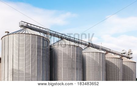Agricultural Silos. Building Exterior. Storage and drying of grains wheat corn soy sunflower against the blue sky with white clouds