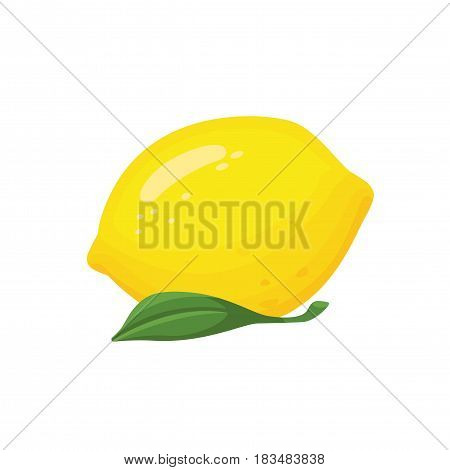 Collection of sliced lemons.Vector Fresh lemon with leave