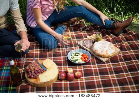 High angle view of couple holding wineglasses while sitting by food on picnic blanket