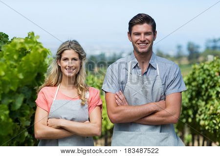 Portrait of smiling couple with arms crossed standing at vineyard