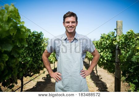 Portrait of smiling farmer with hands on hip standing at vineyard