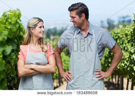 Smiling couple looking at each other while standing in vineyard