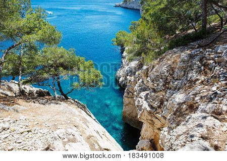 Landscape view on calanques of Port Pin in Cassis near Marseille, Provence, France.