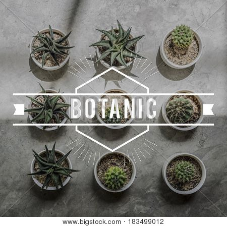 Botanic Nature Plant Environmental Conservation