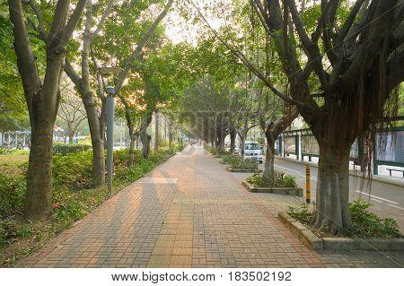 SHENZHEN, CHINA - MARCH 01, 2016: a sidewalk in Longgang District. Longgang District is one of the six districts of Shenzhen, China.
