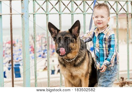 TEL AVIV, ISRAEL. May 6, 2014. Happy Caucasian little boy with a German shepherd dog sticking tongue.