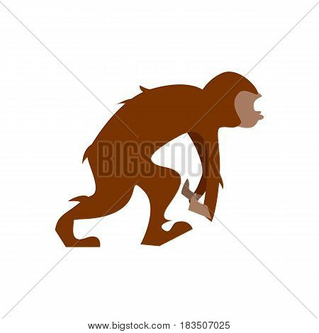 Big humanoid monkey going vector illustration isolated on white background. Animal character in flat design.