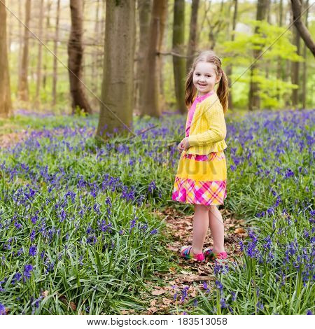 Child With Bluebell Flowers In Spring Forest