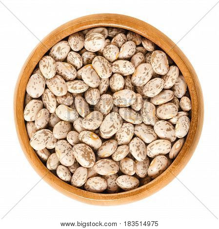 Pinto beans in wooden bowl. Dried variety of the common bean Phaseolus vulgaris. Speckled beans. Most popular bean in USA and Mexico. Isolated macro food photo close up from above on white background.