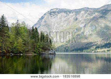 Mountain lake Bohinj with crystal clear water forest reflection