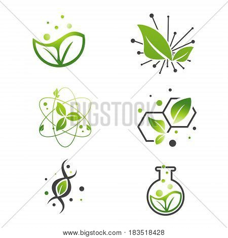 Vegan Natural Green Leaf Abstract Science Lab Collection