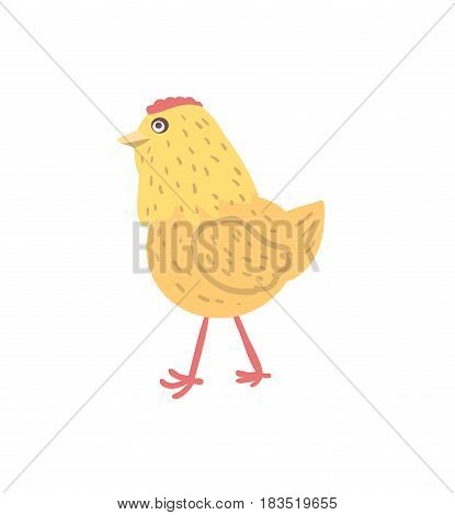 Chick hand drawn vector illustration isolated on white background. Cute farm animal, domestic livestock in cartoon style.