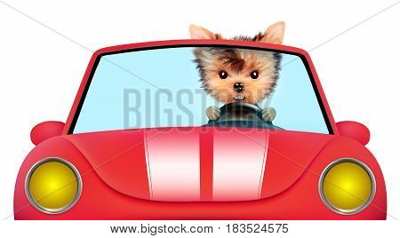 Funny puppy sitting in the red cabriolet isolated on white background. Car rental and buying concept concept. 3D illustration with clipping path