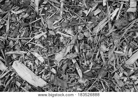 Coarse Wood Chippings Background
