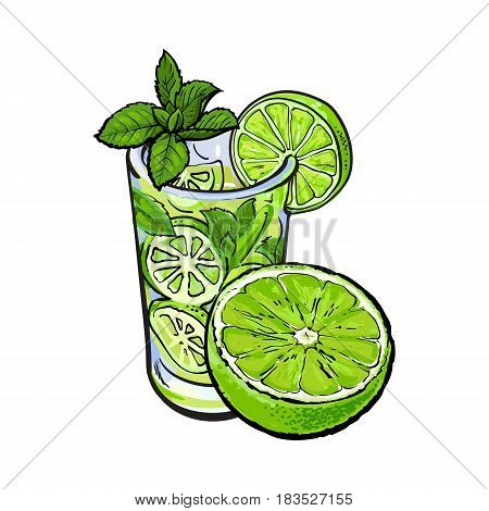 Lime slice and glass of freshly squeezed juice with ice and straw, sketch style vector illustration on white background. Hand drawn glass of lime cocktail with ice and grapefruit slice