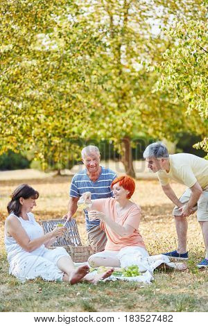 Seniors as friends making a picnic in the park in summer
