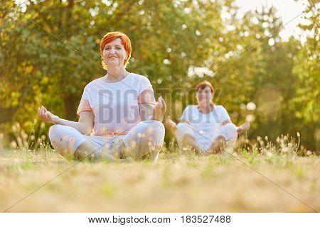 Senior women making yoga in the park in summer