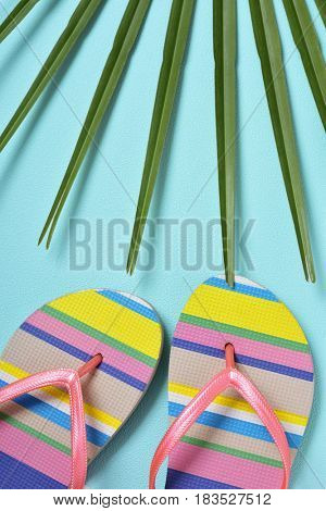 closeup of a pair of colorful striped-patterned flip-flops with pink straps and a palm leaf on a blue background