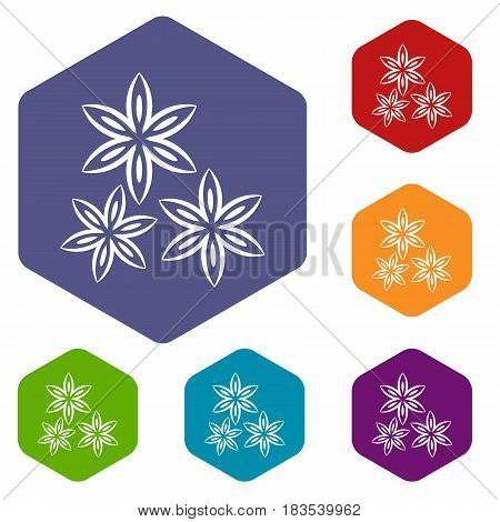 Star anise icons set hexagon isolated vector illustration