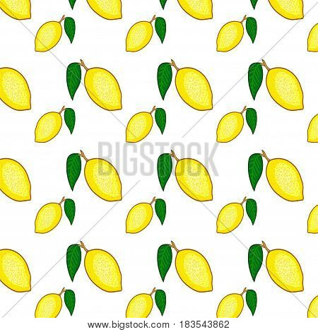 Citrus motive. Seamless vector food pattern. Ripe lemon on a white background. Hand drawn vector seamless pattern with yellow fruits.