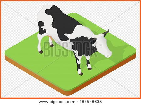 cow isometric isolated vector eps Illustration. domestic cattle eps