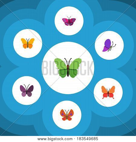 Flat Monarch Set Of Moth, Archippus, Butterfly And Other Vector Objects. Also Includes Monarch, Archippus, Milkweed Elements.
