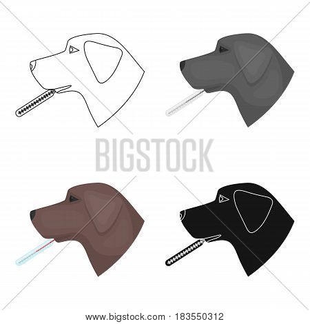 Dog with thermometer icon in cartoon design isolated on white background. Veterinary clinic symbol stock vector illustration.
