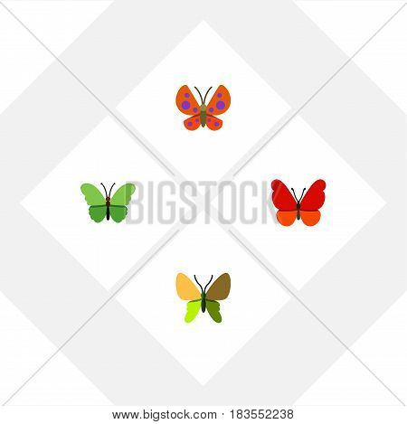Flat Butterfly Set Of Milkweed, Moth, Beauty Fly And Other Vector Objects. Also Includes Monarch, Milkweed, Butterfly Elements.