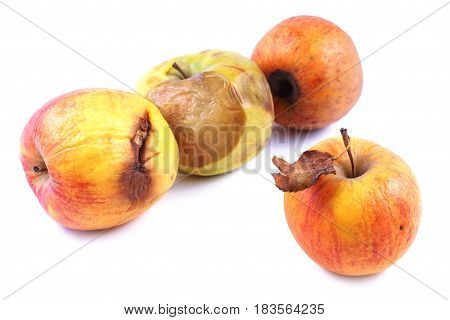 Apples wilted rotten on a white background