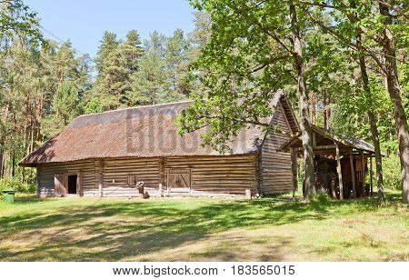 RIGA LATVIA - JUNE 13 2016: Threshing barn (erected in 1750s reconstructed in 1986) of Lupisi farmstead of Zemgale ethnic group. Exhibited in Ethnographic Open-Air Museum of Latvia since 1937