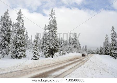 Road through a Winter Wonderland - Salen in Sweden.