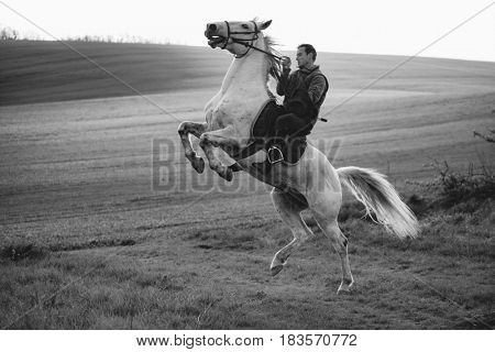 Man rider jumping with horse