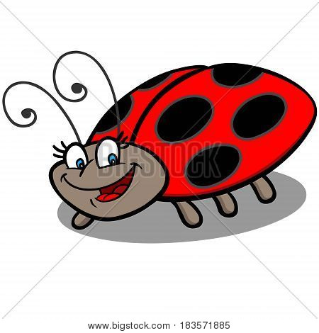 A vector illustration of a Lady bug.