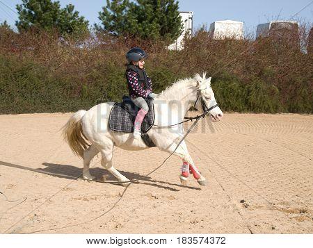 Little girl on galloping white pony training horseriding