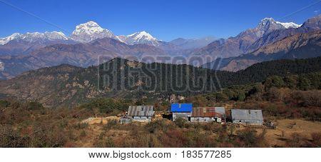 Scene on the way to Mohare Danda Nepal. Dhaulagiri range and Nilgiri. Simple hotels.