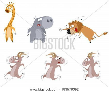 Vector illustration of a six animals set
