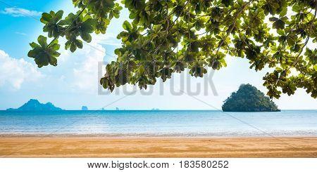 Paradise Ao Nang beach. Sea and plant, Krabi Thailand