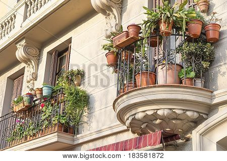House wall with windows and moulding in Barcelona Spain