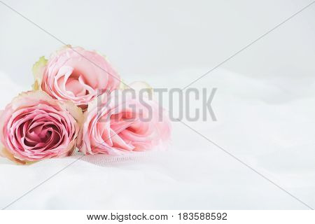Floral Styled Stock Photograph