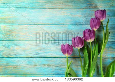 Beautiful lilac tulips on color wooden background