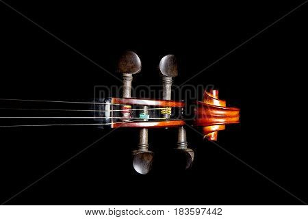 Violin scroll peghead isolated against a black background