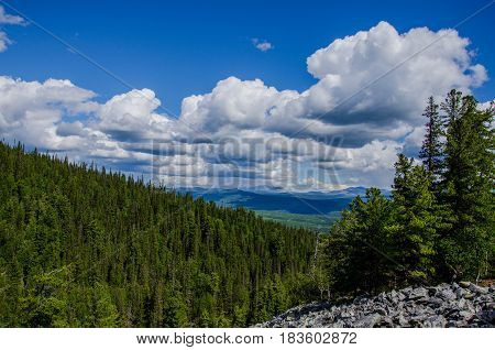 Green hill covered by firs beneath the cloudy sky from the top of mountain